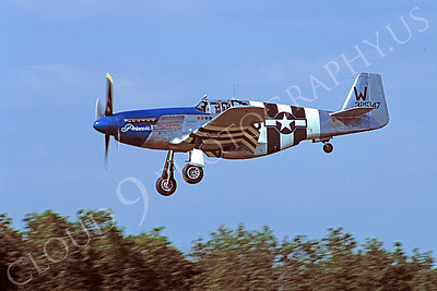 WB - 00038 North American P-51 Mustang Princess Elizabeth by Stephen W D Wolf