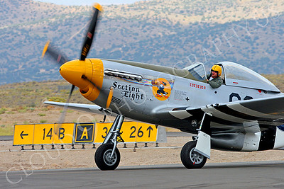 WB - 00029 North American P-51 Mustang Section Eight by Peter J Mancus