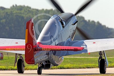 WB - North American P-51 Mustang 00059 Rear view of a taxing Tuskegee Airmen North American P-51 Mustang World War II era fighter, by Peter J Mancus