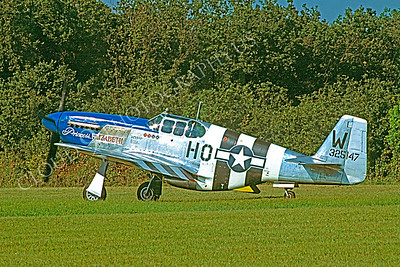 WB - 00025 North American P-51 Mustang Princess Elizabeth by Stephen W D Wolf