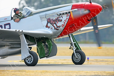 CUNWB 00059 North American P-51D Mustange Red Dog XII by Peter J Mancus