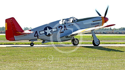 WB - North American P-51 Mustang 00019A A taxing Tuskegee Airmen North American P-51 Mustang World War II era fighter warbird, by Peter J Mancus