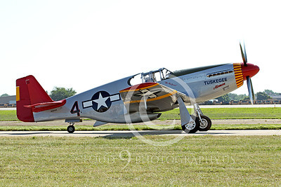 WB - North American P-51 Mustang 00041 A taxing Tuskegee Airmen North American P-51 Mustang World War II era fighter, by Peter J Mancus