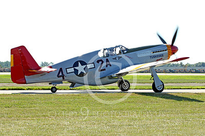 WB - North American P-51 Mustang 00019 A taxing Tuskegee Airmen North American P-51 Mustang World War II era fighter warbird, by Peter J Mancus