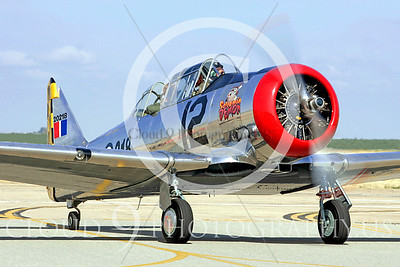 WB - North American T-6 Texan 00033 North American T-6 Texan Canadian Armed Forces trainer warbird Screaming Demon by Peter J Mancus