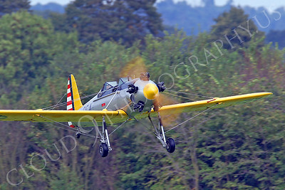WB - Ryan NR-1 Recruit 00024 Ryan NR-1 Recruit by Tony Fairey