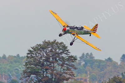 WB - Ryan NR-1 Recruit 00006 Ryan NR-1 Recruit by Tony Fairey