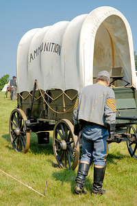 Stock image of ammuniton wagon and driver at the American Civil War reenactment of Morgan's Raid on Georgetown, Kentucky.  This was to commemorate Brigadier General John Hunt Morgan's cavalry raid by the Kentucky Brigade of the Confederate Army of Tennessee on the town in 1862 and subsequent two day battle with Federal troops.