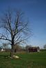 Poffenberger Farm View