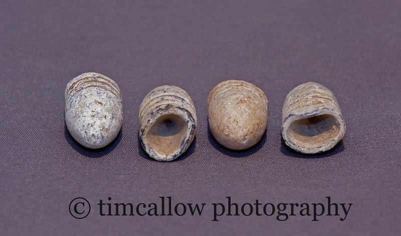 Civil War .58 cal. bullets minnies from Antietam