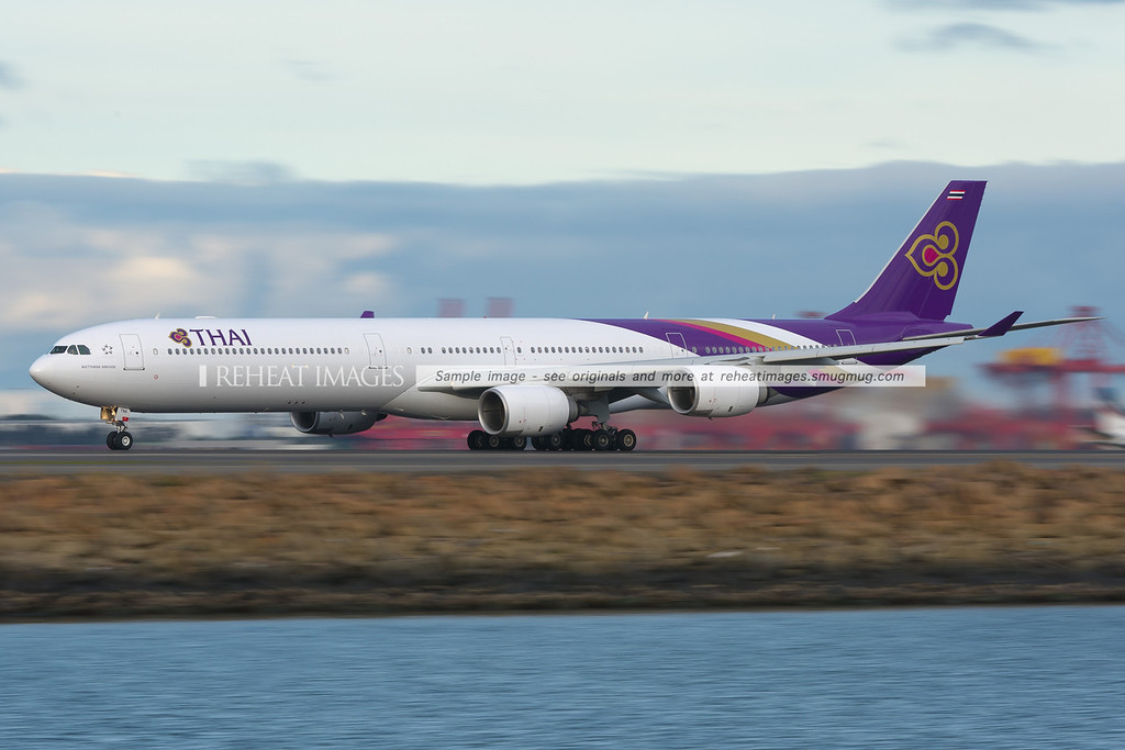 Thai Airbus A340-600 takes off from Sydney airport.