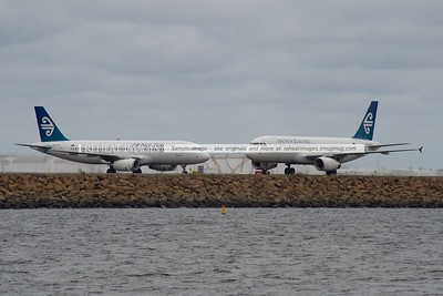 Air New Zealand Airbuses at Sydney airport.