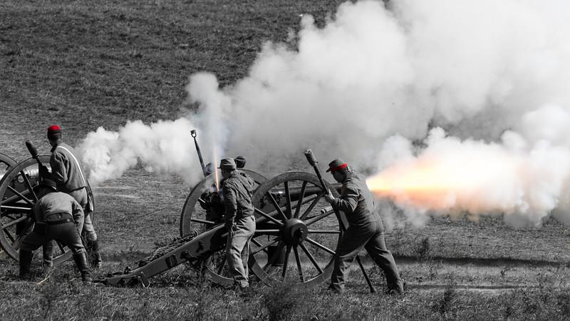 Confederate Cannon (259-366)