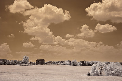 Manassas Battlefield taken with my infrared converted digital camera.