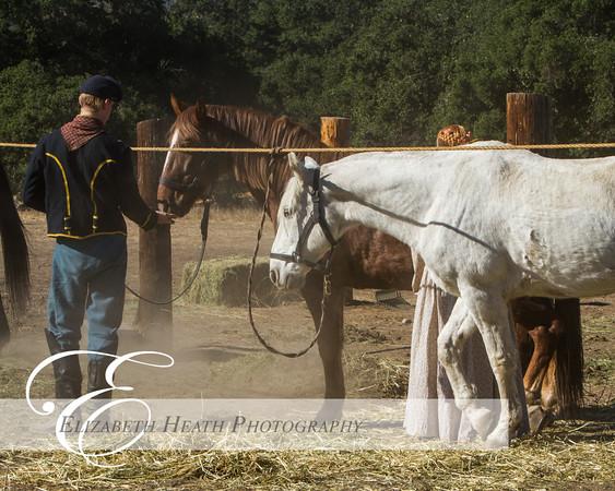 Moorpark 2014-0408