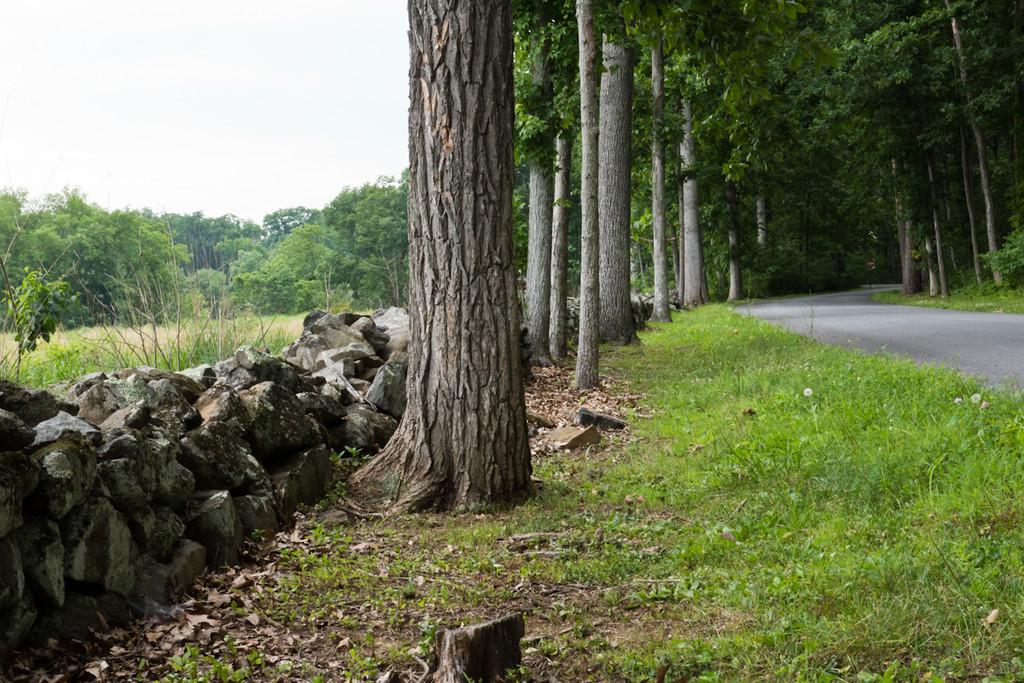 2011-06-25_23rd VA Gettysburg_006