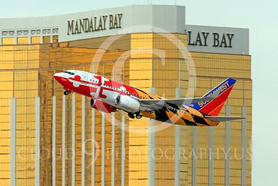 B737P 00046 Boeing 737 Southwest Airline N214WN by Peter J Mancus