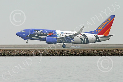 Boeing 737 00180 A colorful Southwest Airline Boeing 737 N280WN PENQUIN SEA WORLD touches down at SFO 12-2014 airliner picture by Peter J Mancus