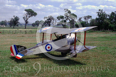 WWI-Sopwith Pup 00001 British Royal Flying Corps by Peter J Mancus