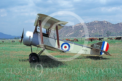 WWI-Sopwith Pup 00003 British Royal Flying Corps by Peter J Mancus