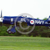 WB-Sea Fury 00060 A landing blue Hawker Sea Fury fighter warbird picture by Stephen W  D  Wolf