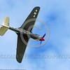 WB-Curtiss P-40 Warhawk 00106 An inverted Curtiss P-40 Warhawk USA WWII era fighter warbird picture by Stephen W  D  Wolf