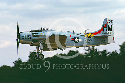 Copy of WB - Douglas A-1 Skyraider 00078 Douglas A-1 Skyraider by Stephen W D Wolf