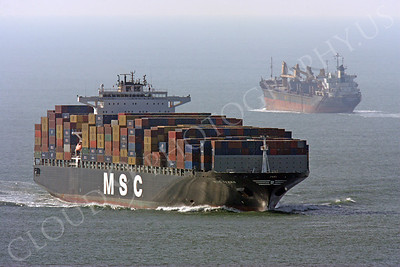 CCS 00004 Civilian cargo ship MSC Texas approaches San Francisco Bay as another ship heads out to the Pacific Ocean by Peter J Mancus
