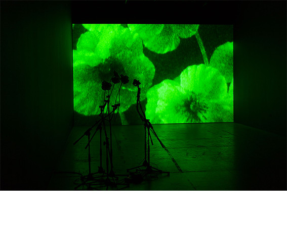 Iñigo Manglano-Ovalle, <i>Nocturne</i>, video. Collection of Jack and Sandra Guthman.