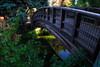 UC Davis Bridge