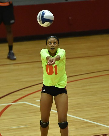 Claflin Volleyball 2016 - For Media Use Only