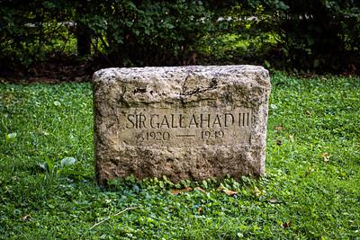 Sir Gallahad III