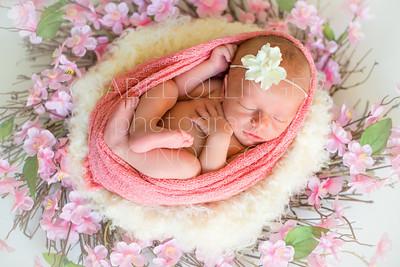 Pfrimmer Newborn-84