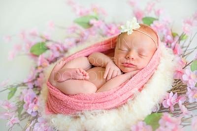 Pfrimmer Newborn-86