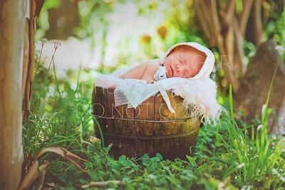Pfrimmer Newborn-88