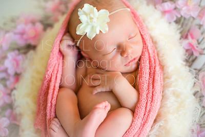 Pfrimmer Newborn-82
