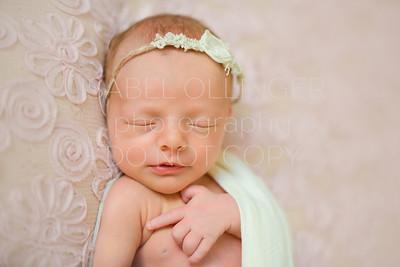 Pfrimmer Newborn-65