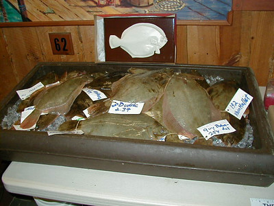 Clamhut Flounder Tournament