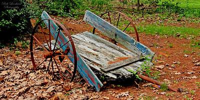 Rustic cart in Clark Botanic Garden.