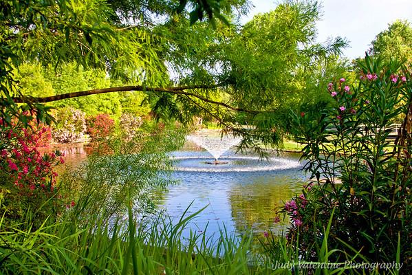 Summer at Clark Gardens
