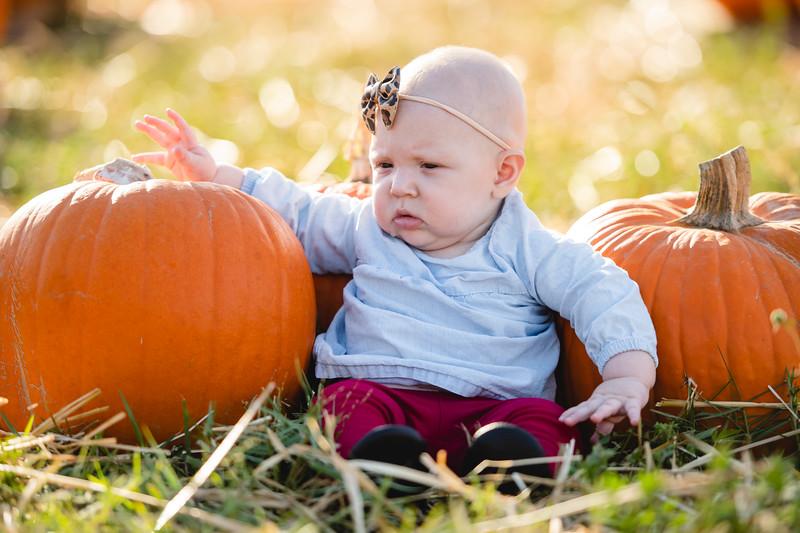 Pumpkins-October2019-17