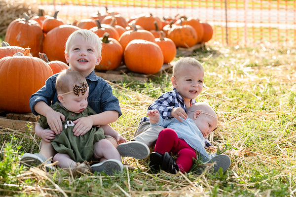 Pumpkins-October2019-6