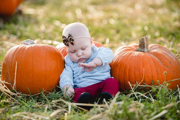 Pumpkins-October2019-13