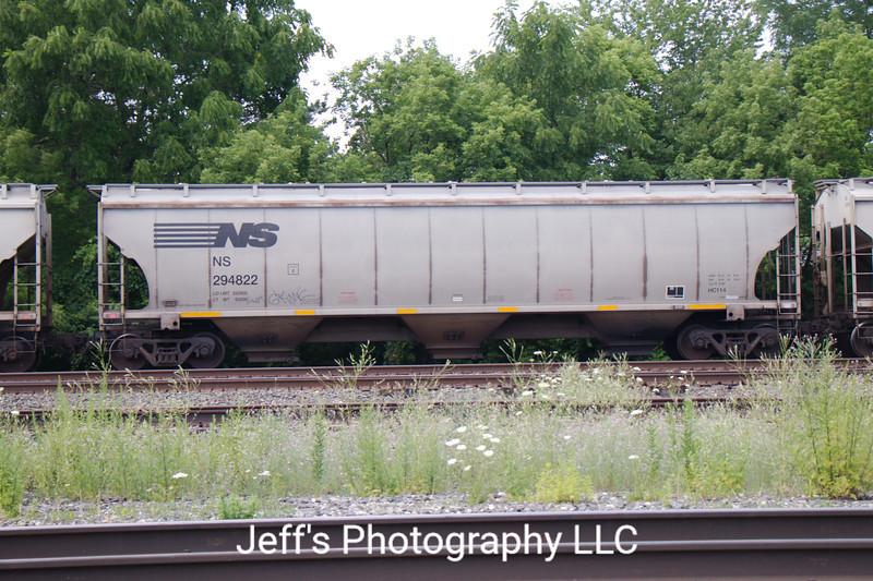 Norfolk Southern 3-Bay Trinity 5161 cu. ft. Class HC114 Covered Hopper No. 294822
