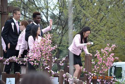 2011 cherry blossom festival washington DC