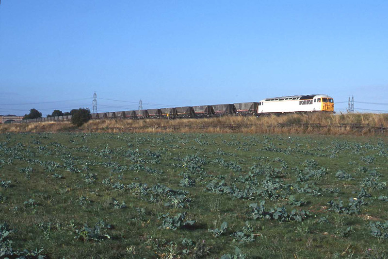 13 September 1996 :: Another guise for 56041 in  white interim paintwork hauls MGR wagons past Burton Salmon