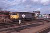 6 February 1989 :: In grey large logo livery, 56033 is shunting around Westbury