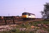 14 May 1998 :: 56036 with Petroleum sub-sector colours is pictured at Toton.  This locomotive was unique in having the Petroleum sub-sector decal, applied by mistake?