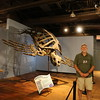 Trip leader Jerry Reynolds in front of his favorite exhibit, a prehistoric Archelon ischyros turtle.