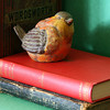 not bird books <br /> Red and green were the hardest complementary colors for me to find for this assignment. So today the morning of the day I posted my 1st assignment (4 days before the deadline and way after most of the other students posted) I spent 3 hours or so messing with setups of red and green. I think I like this one, but I've shot so many I can't tell anymore.